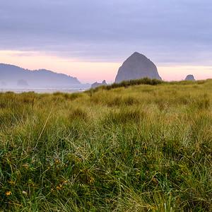 Coaster - Haystack Rock Sunset