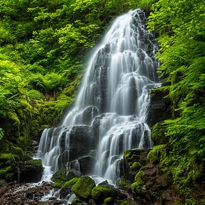 Coaster - Fairy Falls