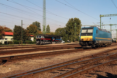 Floyd, 659 002 & MAV, 480 020 at Dunaujvaros on 5th October 2013