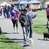 John Strickler - Digital First Media<br /> Dog lovers walk the ceremonial lap during the 10th American Cancer Society Bark for Life held in Pottstown.