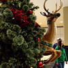 A reindeer appears to leap past a Christmas tree at Montgomery Mall on Black Friday Nov. 24, 2017. (Bob Raines--Digital First Media)