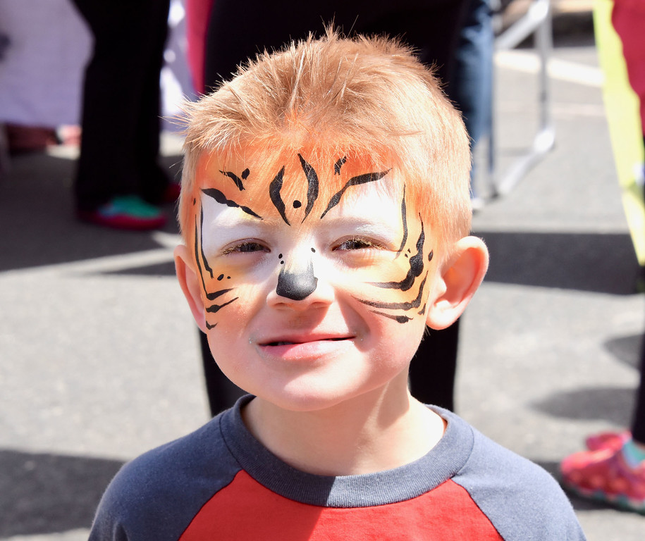 . Jesi Yost � For Digital First Media Nolan Jerant, 4, of Topton had his face painted at a tiger by Four Leaf Face Painting at Boyertown�s Coming Out of Hibernation festival.