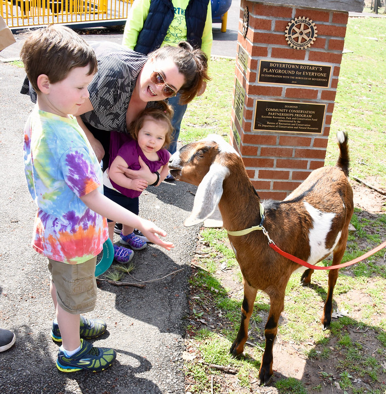 . Jesi Yost � For Digital First Media Children feed animal crackers to �Maggie May,� a 1-year-old Nubian show goat from Spotted Hill Farm.