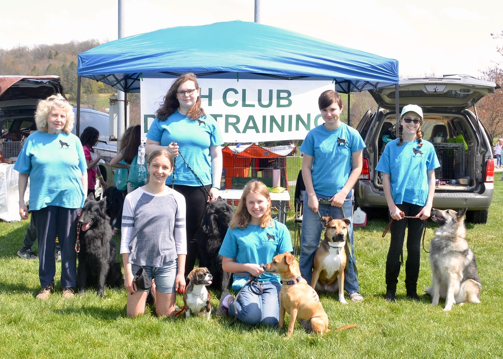 . Jesi Yost - Digital First Media  The 4-H Dog Training Club, ages 8 - 18, brought their dogs to Go Fly a Kite! Day and Healthy Kids Day in Bern Township on April 28. The club  meets every month to practice training dogs.