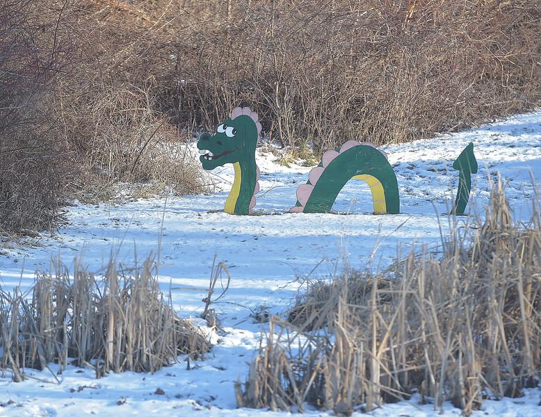 PETE BANNAN -DIGITAL FIRST MEDIA     The Marsh Ness monster.