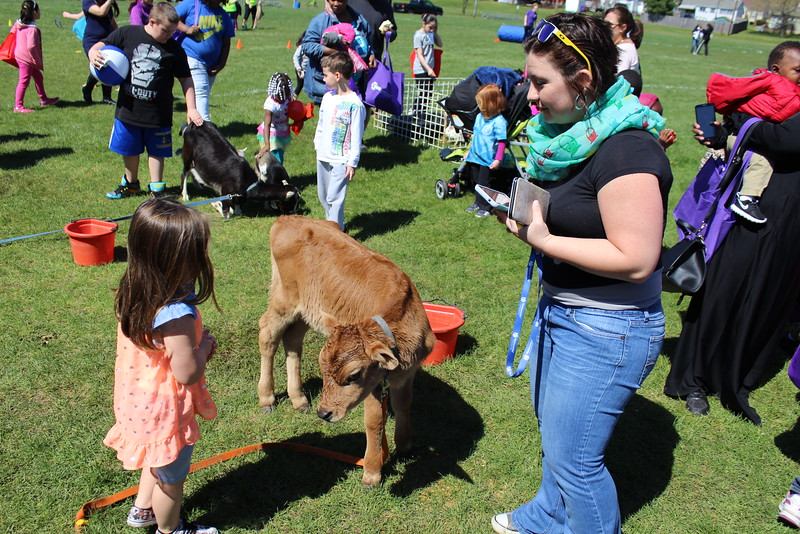 Michilea Patterson, Digital First Media<br /> Children and their families enjoy a petting zoo as part of the combined PEAK Pottstown Celebrates Young Children and YMCA Healthy Kids Day event Saturday afternoon.