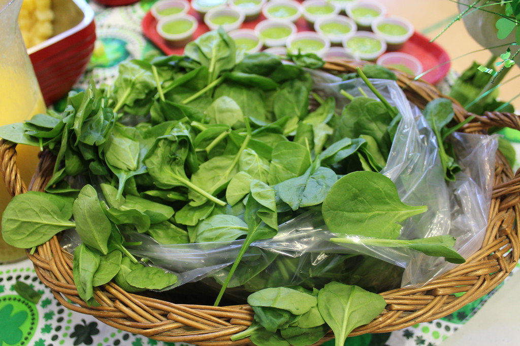 . A bowl of spinach is displayed. East Vincent Elementary School students enjoyed healthy and green spinach smoothies in honor of St. Patrick\'s Day on Friday, March 17, 2017.