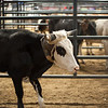 2013-07-07-Rodeo-12