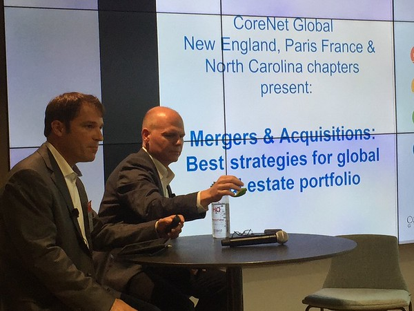 Mergers & Acquisitions: Strategies for Global Portfolio Consolidation