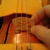 Roughly position the bridge and stand it up. Make sure that the low side of the bridge is on the treble side (under the the E string) and that the strings are slotted in their proper slots in the nut and bridge. Lift the bridge (don't drag) and place the feet in line with notches of the ƒ hole.