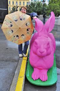 Vienne - Albertina - C'est bien connu, tous les lapins sont de couleur fuschia - Autriche