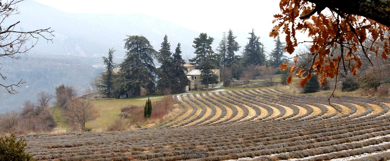 14-2-2010 - Saignon - Salen  au dessus de l'Aiguebrun
