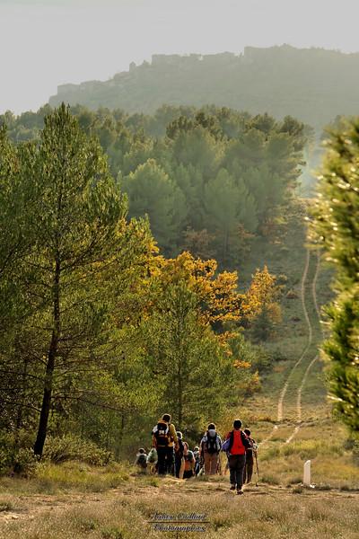 20-11-2005 Alpes de Hte Provence Entre Ganagobie et Lurs