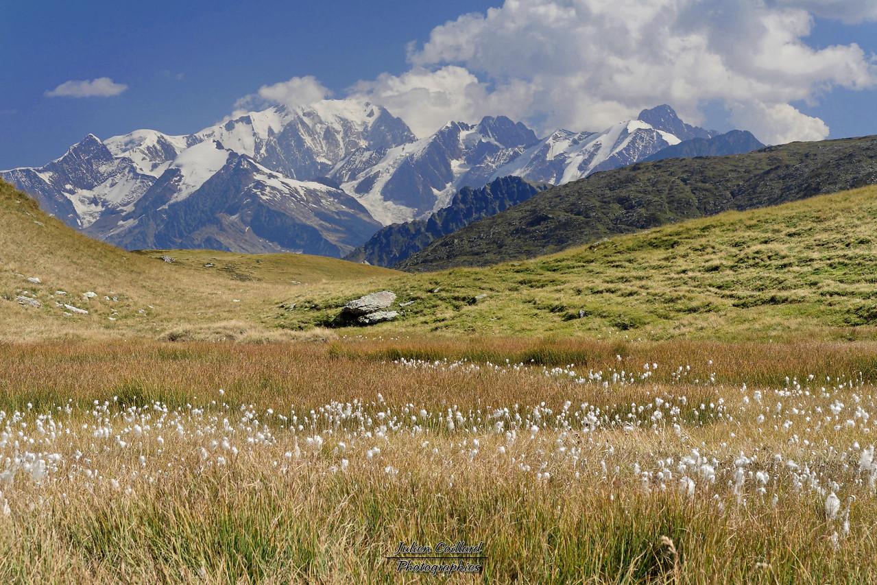 02-09-2005 Beaufortain Massif du Mont Blanc depuis le Col du Sallestet