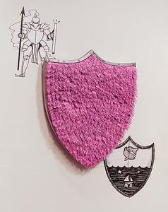 """Strange Shield"""