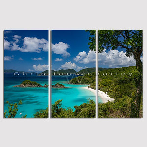 STJ 125 Trunk Bay, St. John, US Virgin Islands triptych