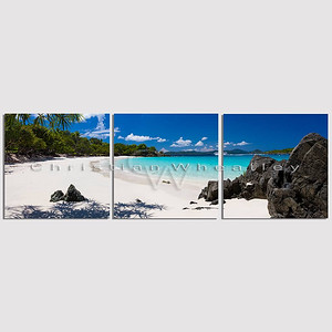 STJ 315 Turtle Bay, St. John, US Virgin Islands triptych