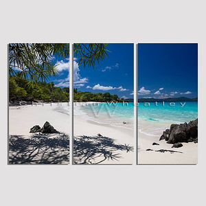 STJ 133 Turtle Bay, St. John, US Virgin Islands triptych