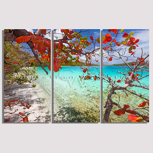 STJ 124 Gibney Beach, St. John, US Virgin Islands triptych