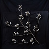 "dogwood in bloom all steel, 40"" x 45""     wall hanging"
