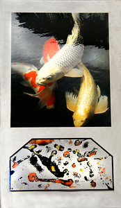 Koi Dreams (Burnished Metal with Transparency fused to Metal)