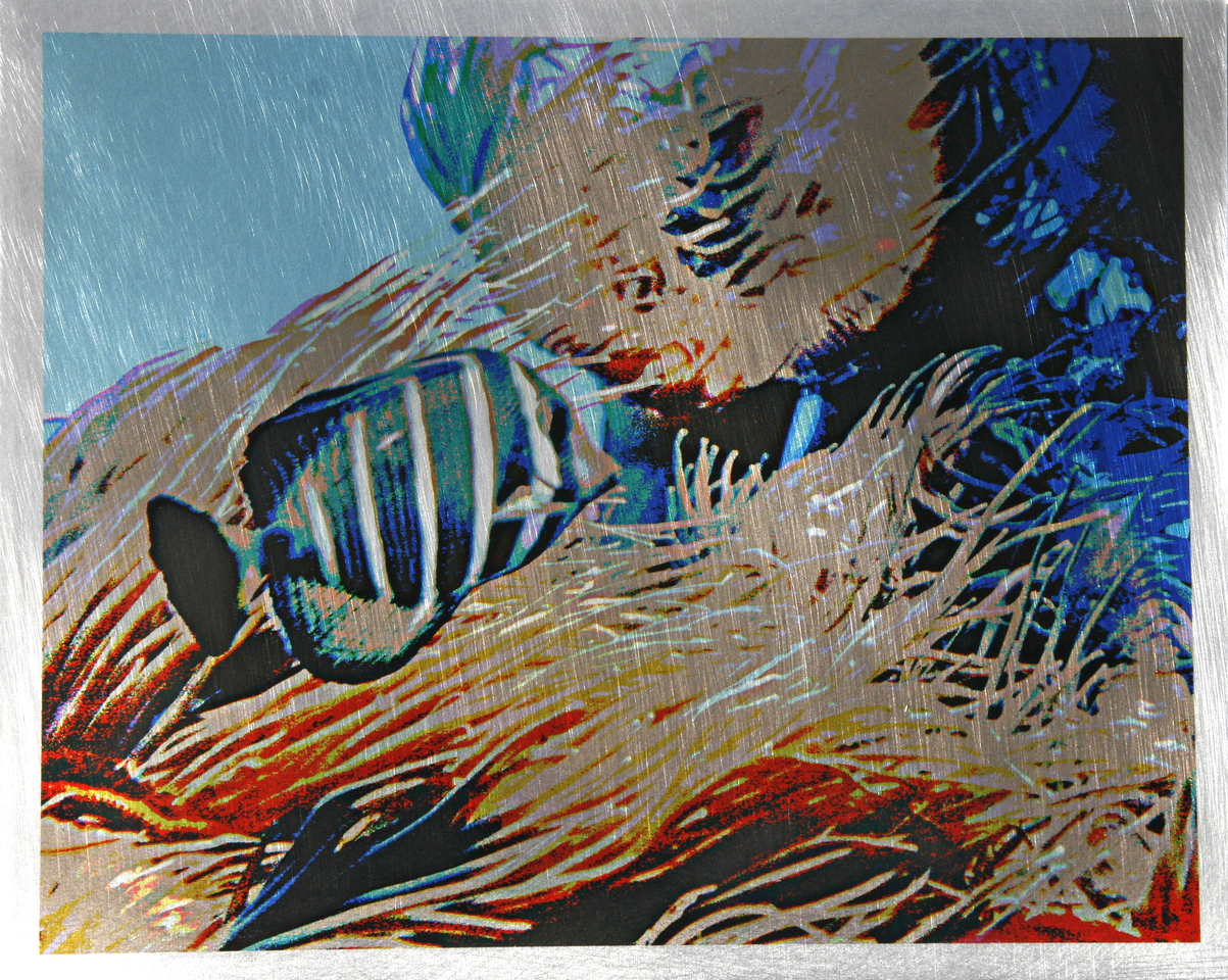 Sea World (Burnished Metal with Transparency fused to Metal)