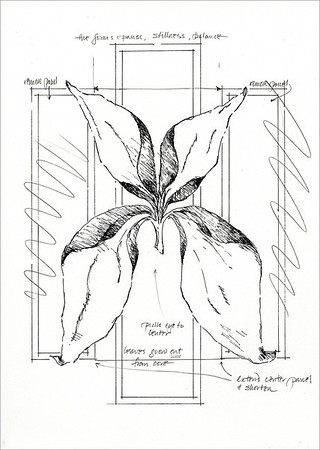 Imaginary Botanicals:  Botanical Study 9