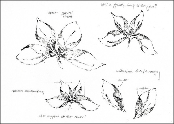 Imaginary Botanicals:  Botanical Study 1