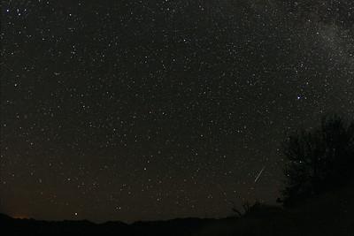 Southern Delta Aquarid meteor near bright star Vega