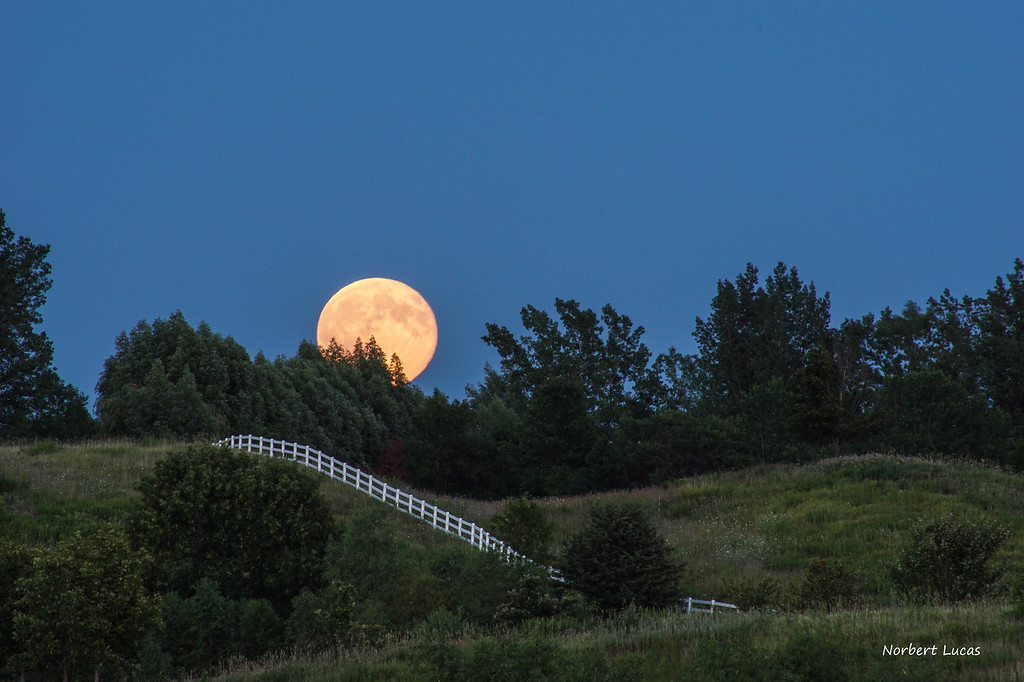 2016 Harvest Moon rising,  Grand Chevalle Parkway