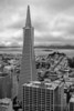 Transamerica and Coit Tower - Black and White