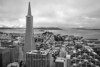 Transamerica and Waterfront - Black and White