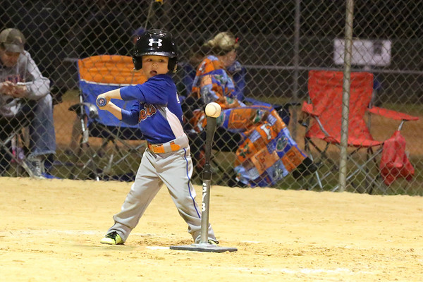 Mets Burford Brother Pest Control T-Ball
