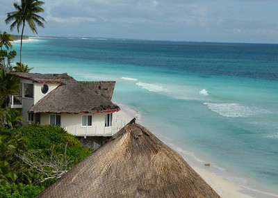 See the Iguana on the palapa roof?