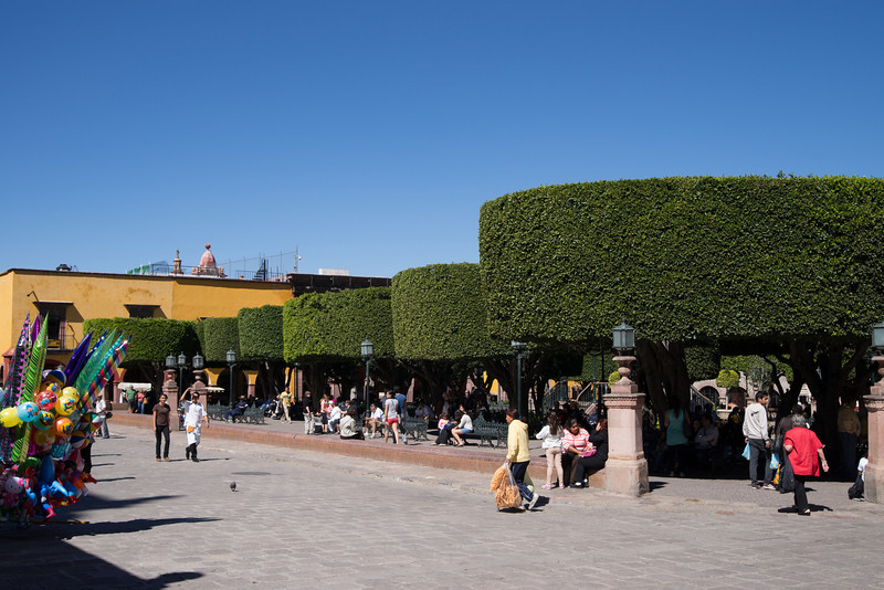 The Jardin