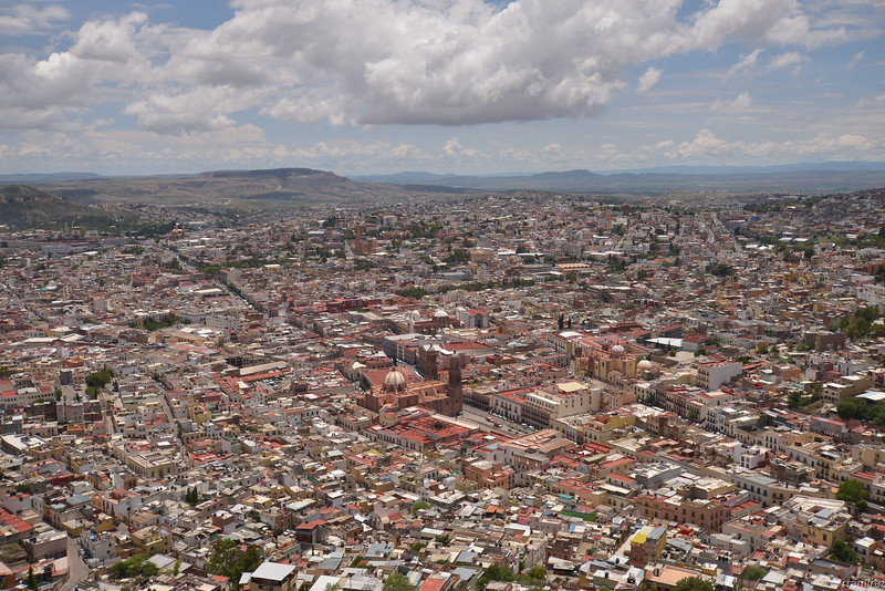 Zacatecas-7228-31