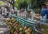 Coconut stand, Ajijic Market, Ajijic, Lake Chapala, Mexico