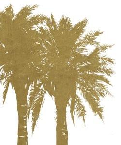 Splendor of the Palms(Raw), 6/27/16, 10:48 AM,  8C, 8274x9982 (1880+2662), 142%, Default Settin,   1/8 s, R72.5, G52.4, B77.9