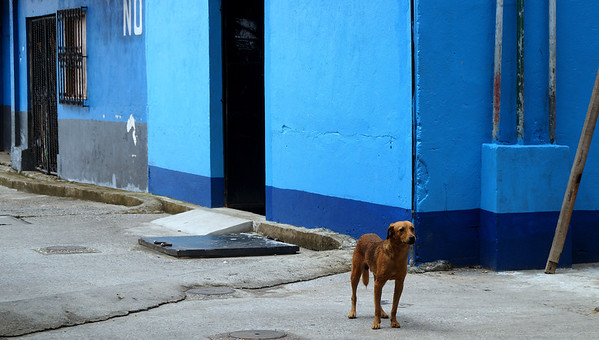 Copán - Rio Dulce - Livingston - Flores