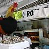 Giant Rooster, San Juan de Dios Market, Guadalajara, Mexico - Mexico photography wall art