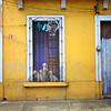 Dogs in Doorway, Guadalajara, Mexico - Mexico photography wall art