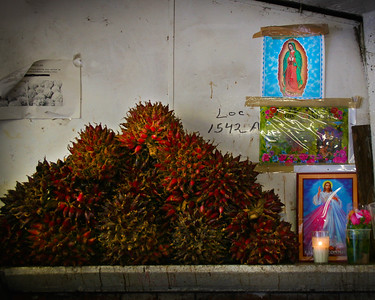 Altar to Guadalupe #2, Guadalajara, Mexico - Mexico photography wall art