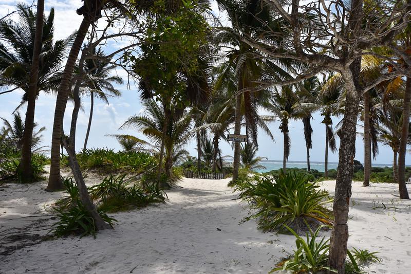 Santa Fe Beach, Tulum, Quintana Roo, Mexico