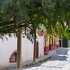 A street in Col. Allende