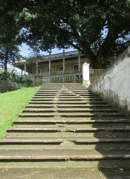 30 steps to La Ceiba