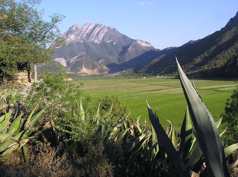 Laguna de Sanchez