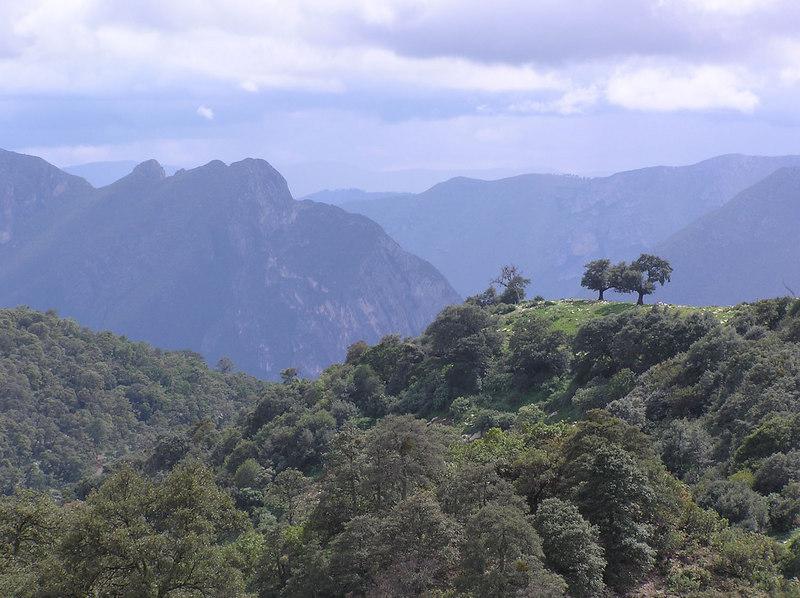 Looking into the Casillas valley from La Cebolla