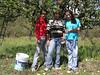 Harvesting apples is a family affair in Laguna de Sanchez