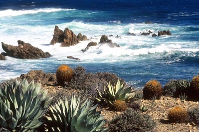 Cedros Island, Mouth of Canon de la Mina