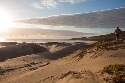 Beach dunes -- Baja, Mexico